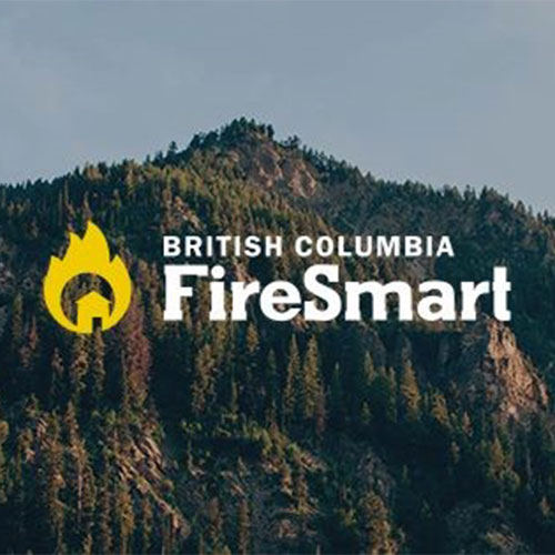 Firesmart